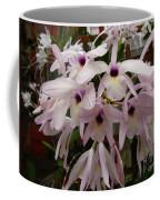 Orchids Beauty Coffee Mug