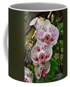 Orchids For You Coffee Mug