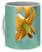 Oregon, United States Of America A Lily Coffee Mug