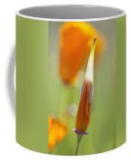 Oregon, United States Of America Poppy Coffee Mug