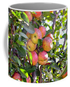 Organic Apples In A Tree Coffee Mug