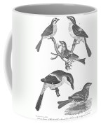 Ornithology, 19th Century Coffee Mug