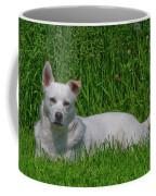 Orvis 0360 Coffee Mug