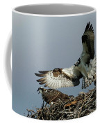 Osprey 2 Coffee Mug