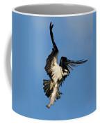 Osprey And Rainbow Trout Coffee Mug