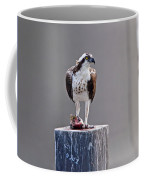 Osprey And Sushi Coffee Mug