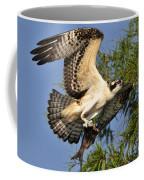 Osprey Flight Coffee Mug