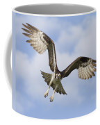 Osprey In Flight One Coffee Mug