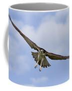 Osprey In Flight Two Coffee Mug