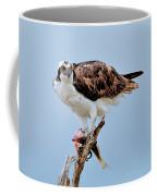 Osprey In The Morning Coffee Mug