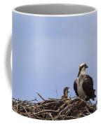 Osprey Mother And Chick Coffee Mug