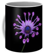Osteospermum Coffee Mug