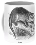 Otter, 1873 Coffee Mug