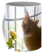 Our New Princess Coffee Mug