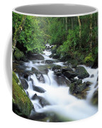 Owengarriff River, Killarney National Coffee Mug