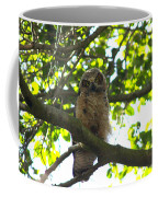 Owl In Central Park Coffee Mug