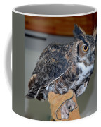 Owl Together Now Coffee Mug by LeeAnn McLaneGoetz McLaneGoetzStudioLLCcom