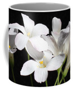 Oxalis Flowers 2 Coffee Mug