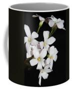 Oxalis Flowers 3 Coffee Mug