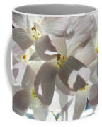 Oxalis Flowers Coffee Mug