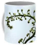 Pacific Giant Astolat Coffee Mug