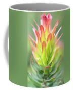 Pagoda Protea Coffee Mug