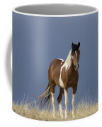 Paint Filly Before Coffee Mug