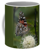 Painted Lady Butterfly Din049 Coffee Mug