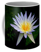 Painted Lily And Pads Coffee Mug