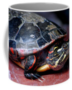 Painted Turtle Michigan Coffee Mug