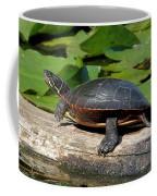 Painted Turtle On Log Coffee Mug