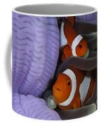 Pair Of Clown Anemonefish, Indonesia Coffee Mug