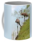 Pair Of Sandhills At The Marsh Coffee Mug