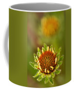 Pale Purple Coneflower Bud Coffee Mug