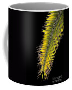 Palm Frond Against Black Coffee Mug
