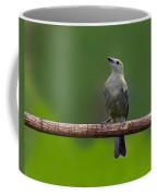 Palm Tanager Coffee Mug