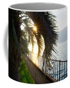 Palm Tree In Backlight Coffee Mug