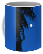 Palm Tree Silhouetted Against The Sky Coffee Mug