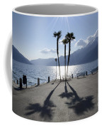 Palm Trees With Shadows Coffee Mug
