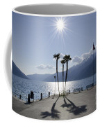 Palm Trees With Shadows On The Lakefront Coffee Mug