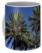 Palms 9838b Coffee Mug
