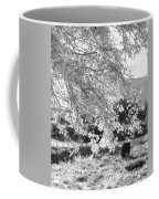 Palo Verde Blossoms Coffee Mug