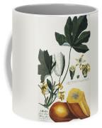 Papaya Coffee Mug