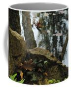 Paradise Springs Reflections Coffee Mug