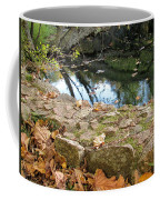 Paradise Springs Stone Wall Coffee Mug