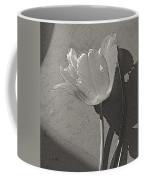 Parrot Variety  Coffee Mug