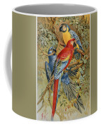 Parrots: Macaws, 19th Cent Coffee Mug