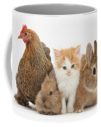 Partridge Pekin Bantam With Kitten Coffee Mug