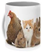 Partridge Pekin Bantam With Kitten Coffee Mug