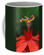 Passion Flower Crown Coffee Mug